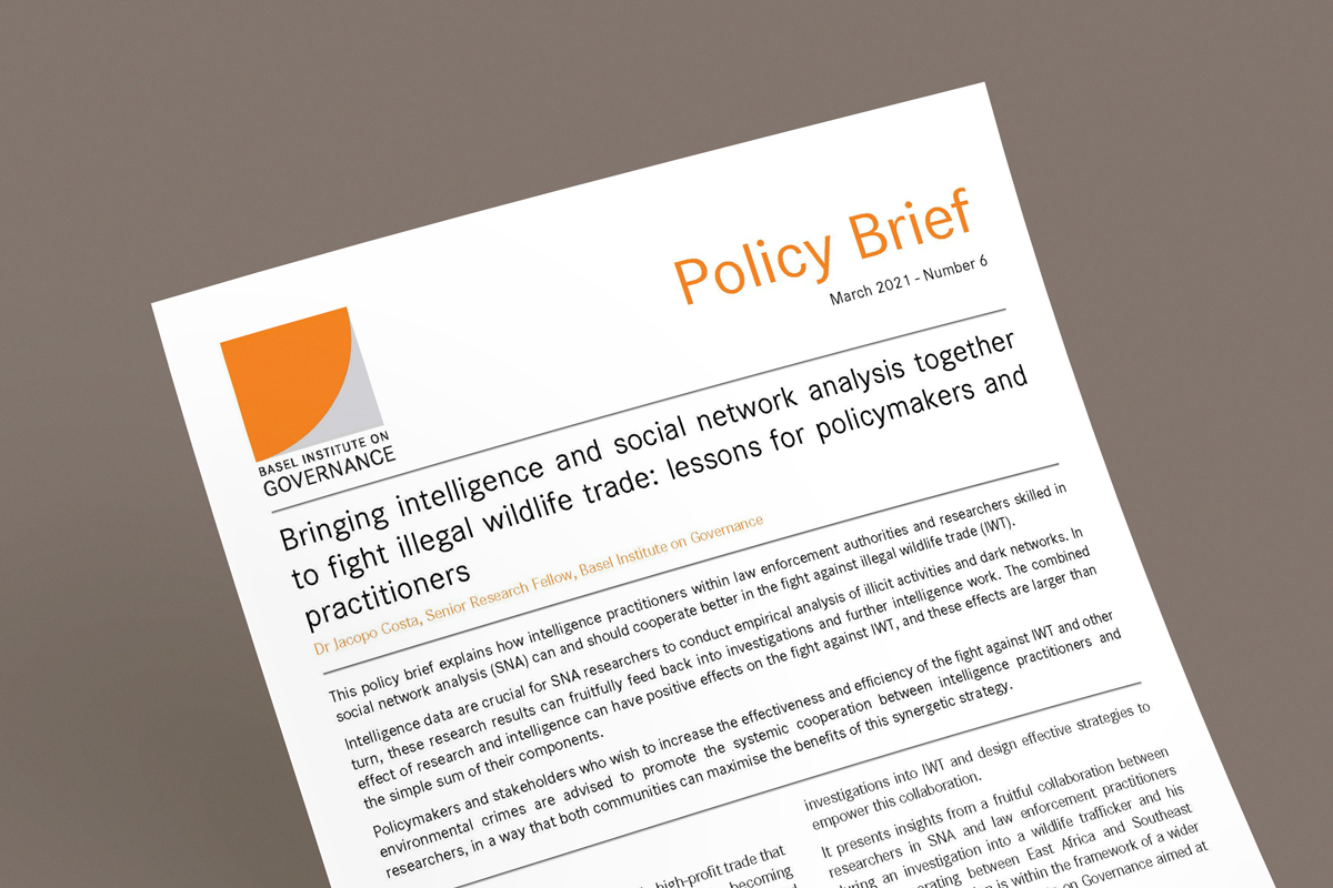 Policy brief 6 mockup