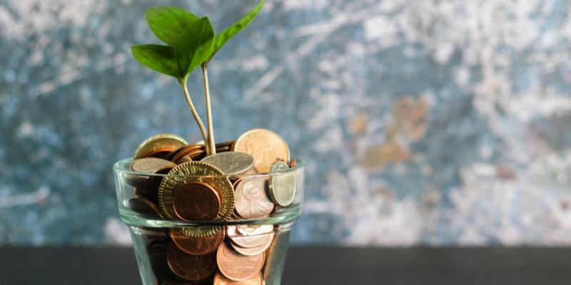 Plant growing out of a pot of coins. Photo by Micheile Henderson on Unsplash