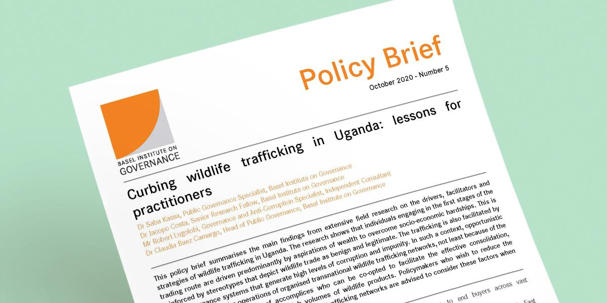 IWT policy brief cover page