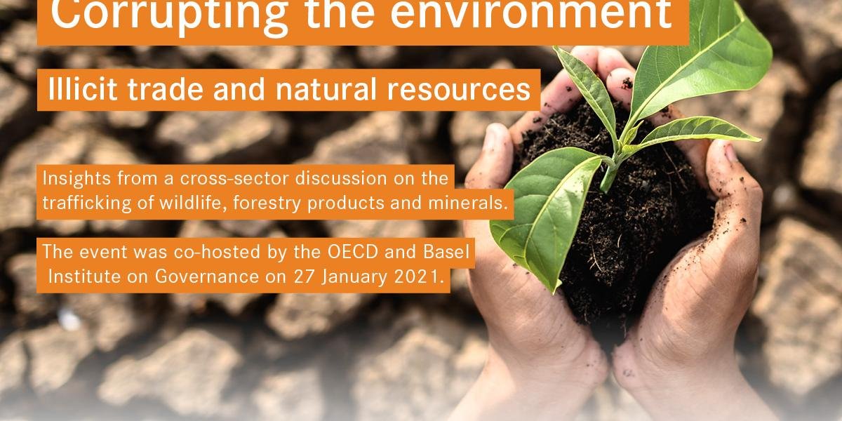 Illicit trade in natural resources webinar